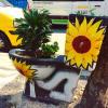 "Comuna 13 Medellín • <a style=""font-size:0.8em;"" href=""http://www.flickr.com/photos/63900911@N04/41240155021/"" target=""_blank"">View on Flickr</a>"