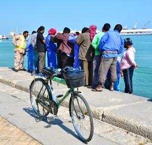 Inmigrantes dedicados a la pesca esperando su salario después de la venta del día.