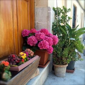 Portales de Mallorca