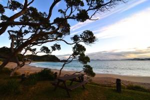 Tutukaka Coast (New Zealand)