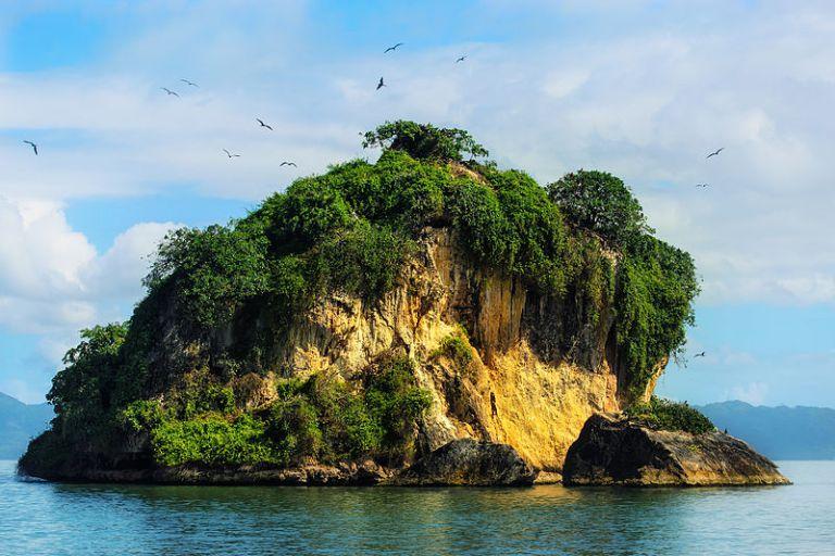 Cayo de los Pájaros (P.N. Los Haitises)