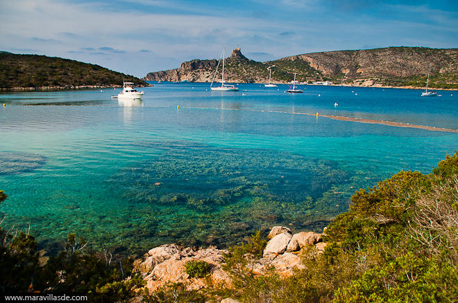 Cabrera y la posidonia, responsable de las cristalinas aguas mediterráneas.