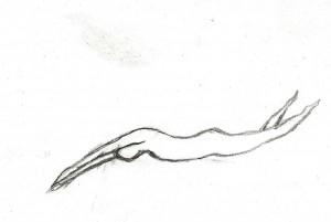 Ilustración de Pco.arte CargoCollective (Pedro Carmona Ortegón)
