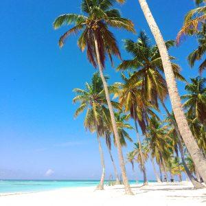 Playa en Isla Saona