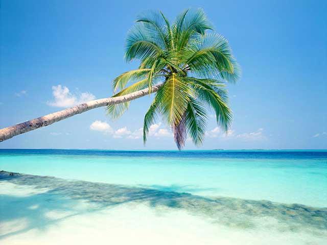 No todo son piñas coladas y playas paradisíacas, lamentablemente.