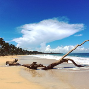 Playa Limón (imagen propia)